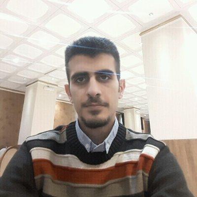 هامون محمدیان پور